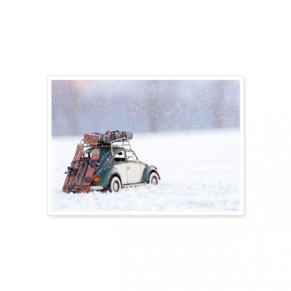 "Postkarte ""Käfer im Schnee"""