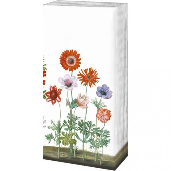Taschentücher 'Blumen aus dem Nassau Florilegium'