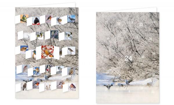 Adventskalenderdoppelkarte 'Den Wintervögeln auf der Spur'