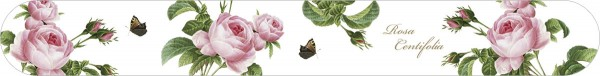 Nagelfeilen 'Rosa centifolia'