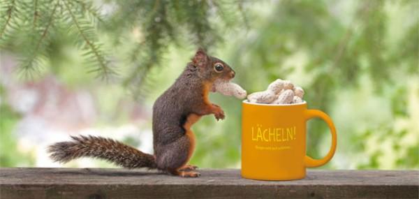 """XXL-Postkarte """"Eichhörnchen bei Frühstücken"""""""