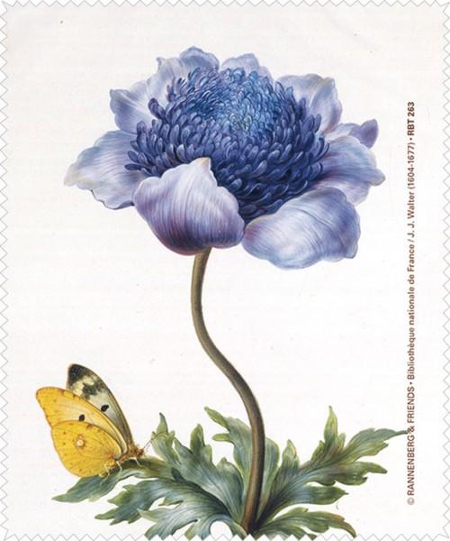 Brillenputztuch 'Anemone aus dem Nassau Florilegium'