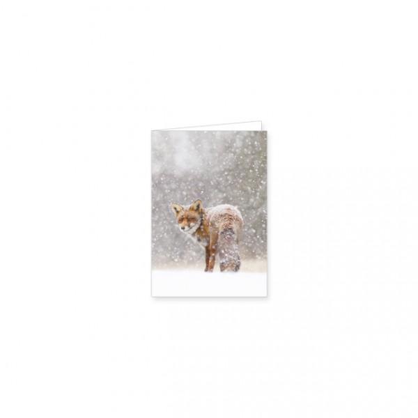 """Mini-Doppelkarte """"Rotfuchs im Schnee"""""""