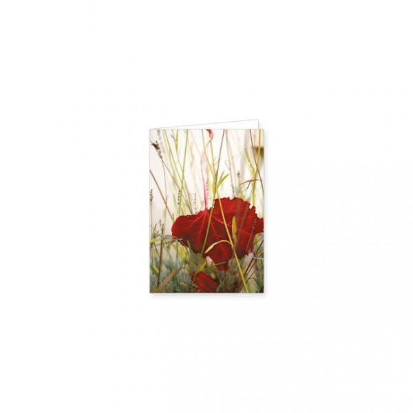 "Mini-Doppelkarte ""Rotes Ahornblatt"""