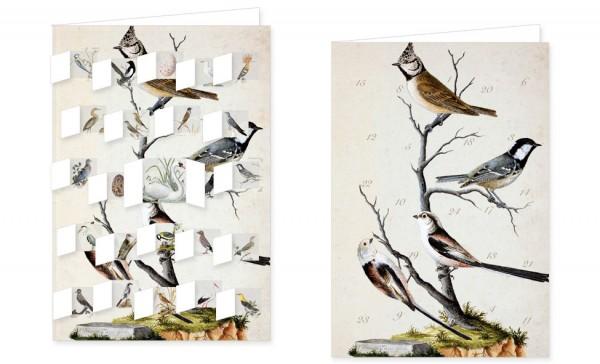 Adventskalenderdoppelkarte 'Wald und Wiesenvögel'