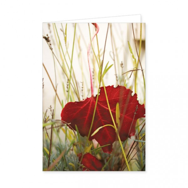 "Doppelkarte ""Rotes Ahornblatt"""