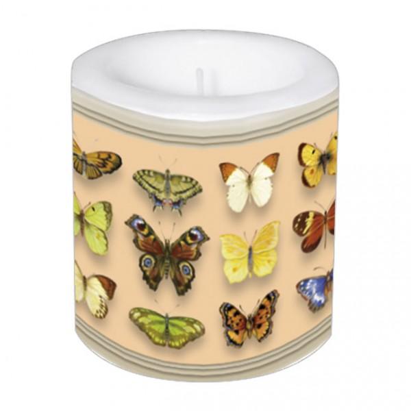 Lampionkerze 'Schmetterlinge'
