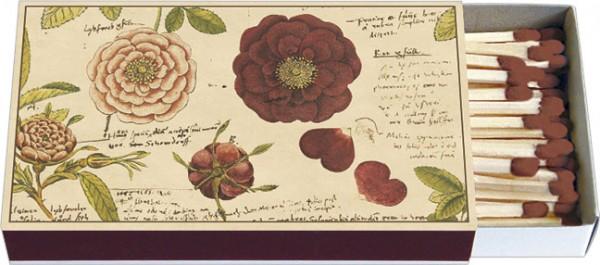 Zündholz-Schachtel 'Rosen aus Conrad Gesner Historia Plantarum'