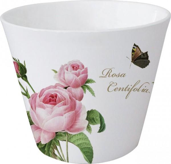 "Becher-Licht ""Rosa centifolia"""