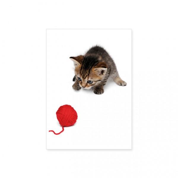 """Postkarte """"Rotes Wollknäuel"""""""