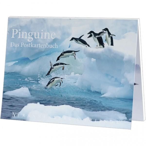 Postkartenbuch 'Pinguine'