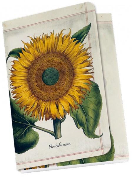 Taschennotizblöckchen 'Sonnenblume aus dem Garten von Eichstätt'