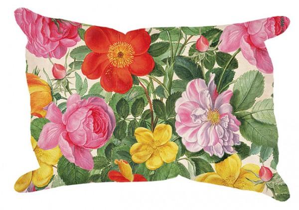 Wisch 'Rosen aus dem Nassau Florilegium'