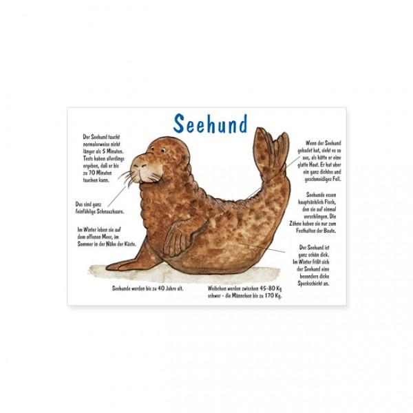"Postkarte ""Seehund"""