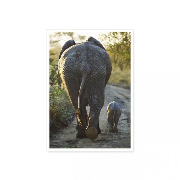 """Postkarte """"Kleinstfamilie"""""""