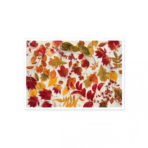 """Postkarte """"Bunte Herbstblätter"""""""