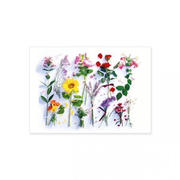 """Postkarte """"Sommerblumen Sortiment"""""""