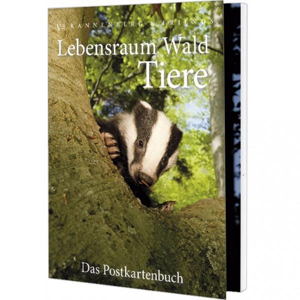 Postkartenbuch 'Lebensraum Wald:Tiere'