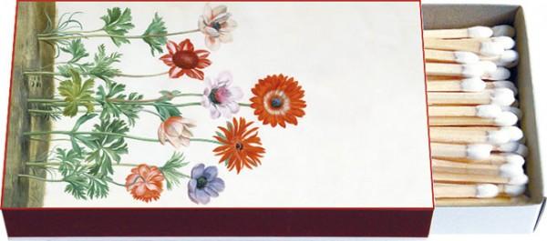 Zündholz-Schachtel 'Blumen aus dem Nassau Florilegium'