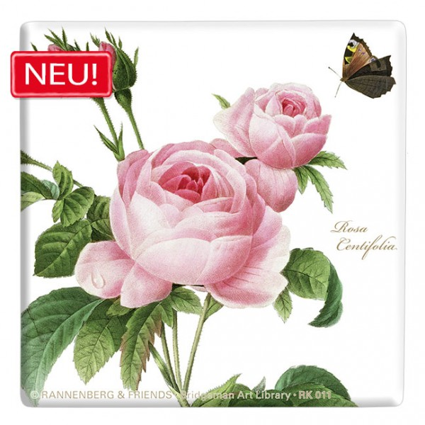 "Kachel ""Rosa centifolia"""