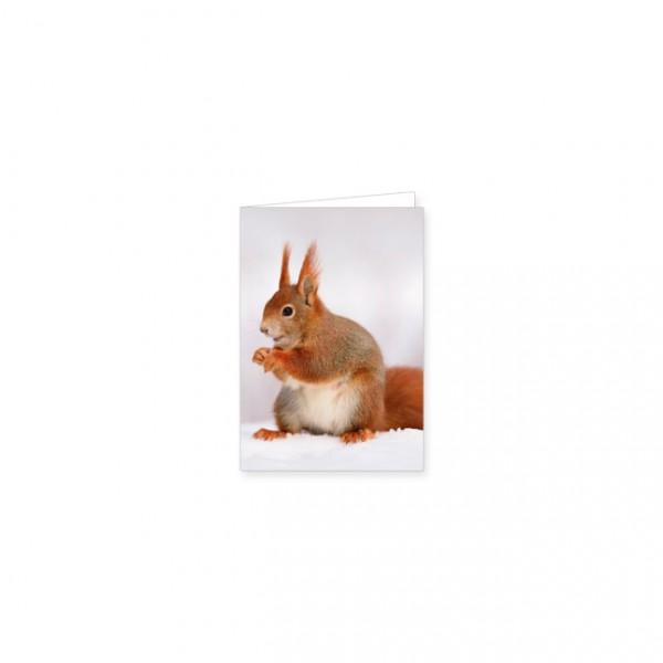"""Mini-Doppelkarte """"Eichhörnchen"""""""