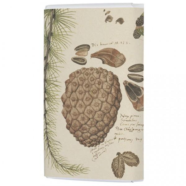 Schokoladentäfelchen 'Zapfen' aus Conrad Gesner Historia Plantarum
