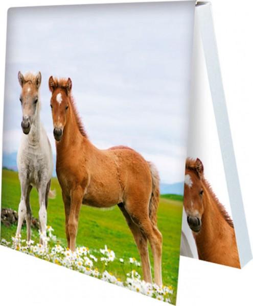Klebezettel 'Zwei Fohlen auf Blumenwiese'