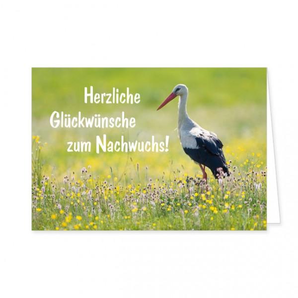"""Doppelkarte """"Herzliche Glückwünsche zum Nachwuchs!"""""""