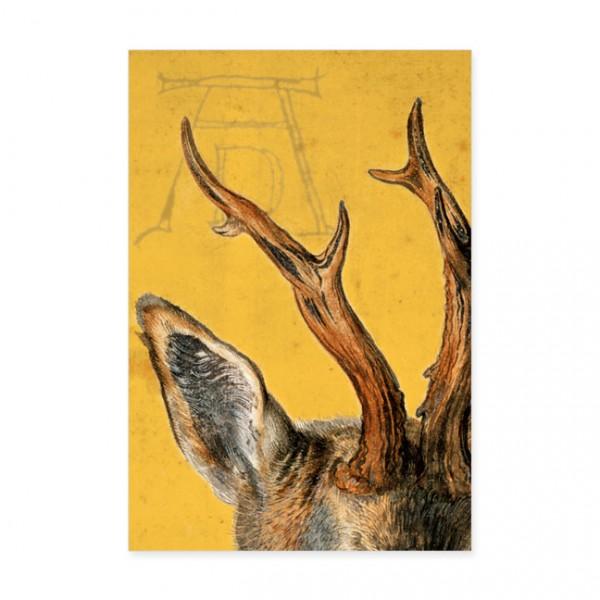 """Postkarten Large """" Detail Kopf eines Rehbocks """""""