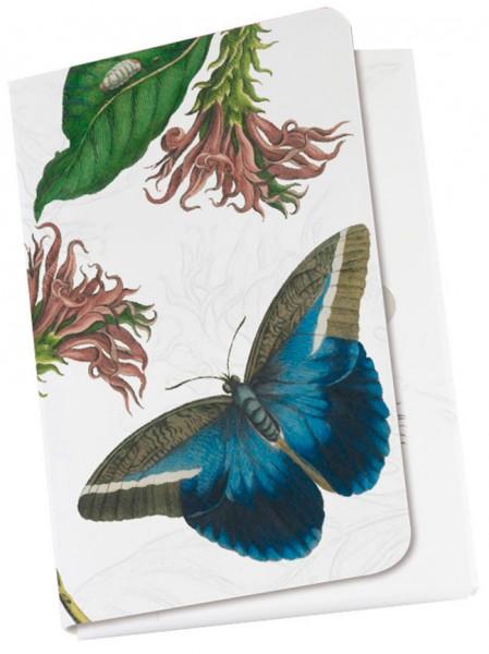 Taschennotizblöckchen 'Maria Sibylla Merian - Vogelfalter'