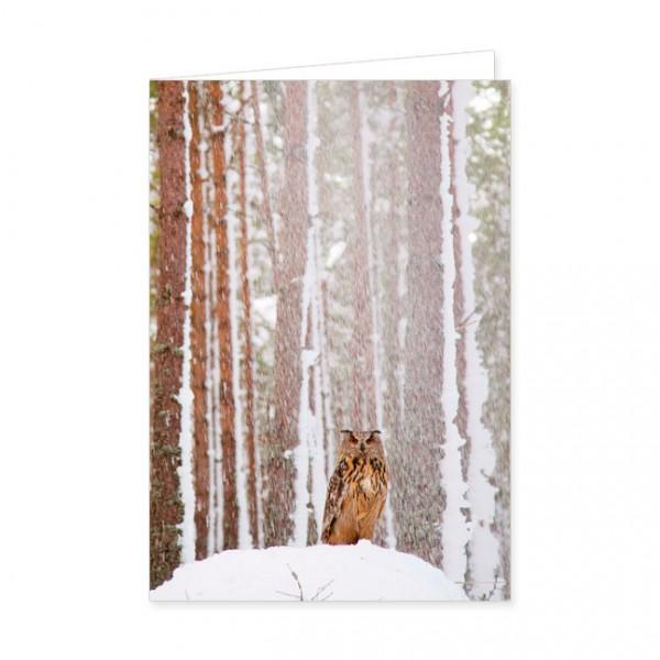 """Doppelkarten """"Uhu im schneeverhangenem Wald"""""""