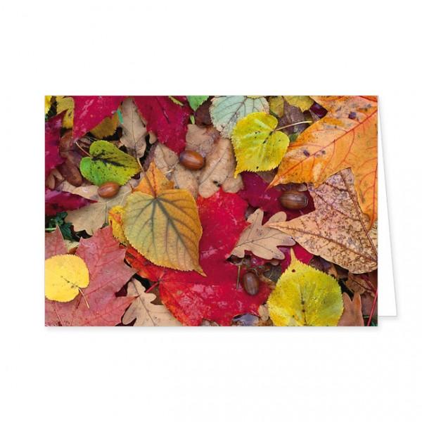 """Doppelkarte """"Bunter Herbstboden"""""""