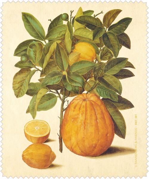 "Brillenputztuch ""Citrus limonum aus dem Gottorfer Codex"""