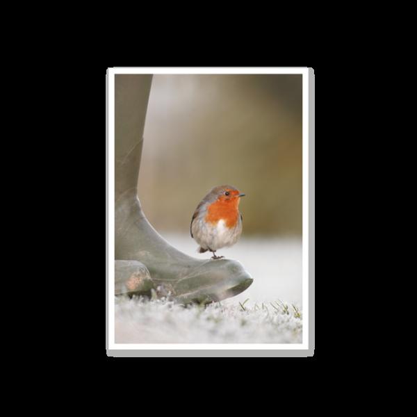 """Postkarte """"Rotkehlchen auf Gummistiefel"""""""