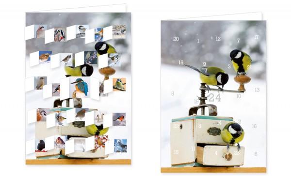 Adventskalenderdoppelkarte 'Vögel im Winter'
