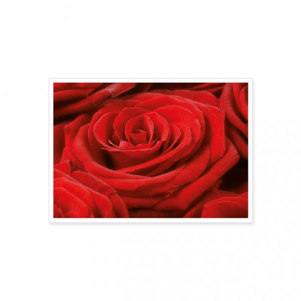 "Postkarte ""Rote Rose"""