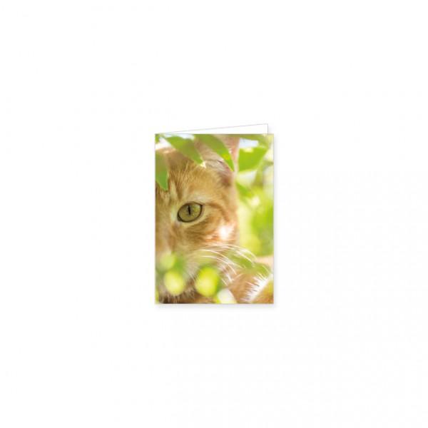 """Mini-Doppelkarte """"Gartenkatze"""""""