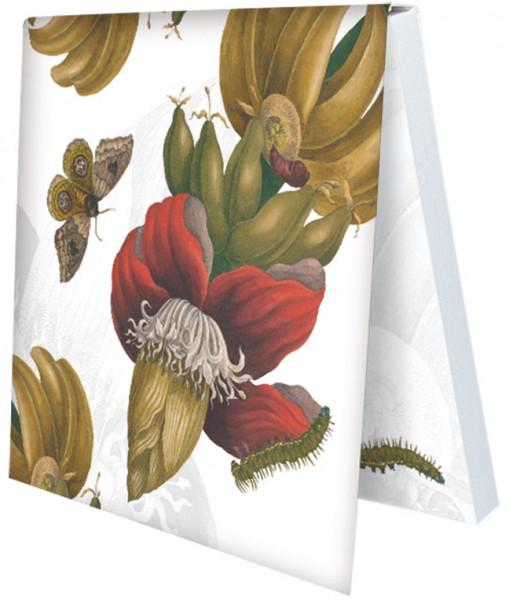 Klebezettel 'Maria Sibylla Merian - Blütenstand einer Banane'