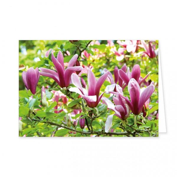 """Doppelkarte """"Magnolienblüten"""""""