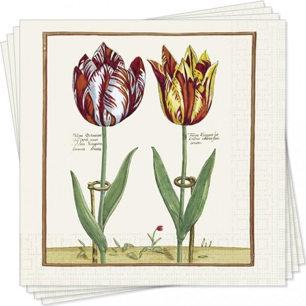 Servietten 'Tulipa Octaviani und Tulipa Elegant'