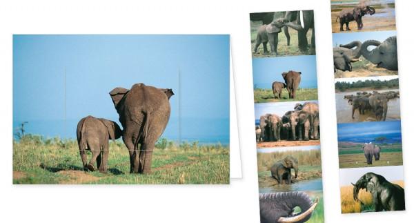 """Türchenkarte """"Elefantenstimmung"""""""