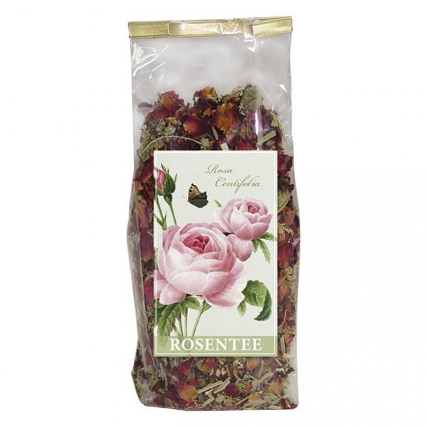 Rosen-Tee 'Rosa centifolia'