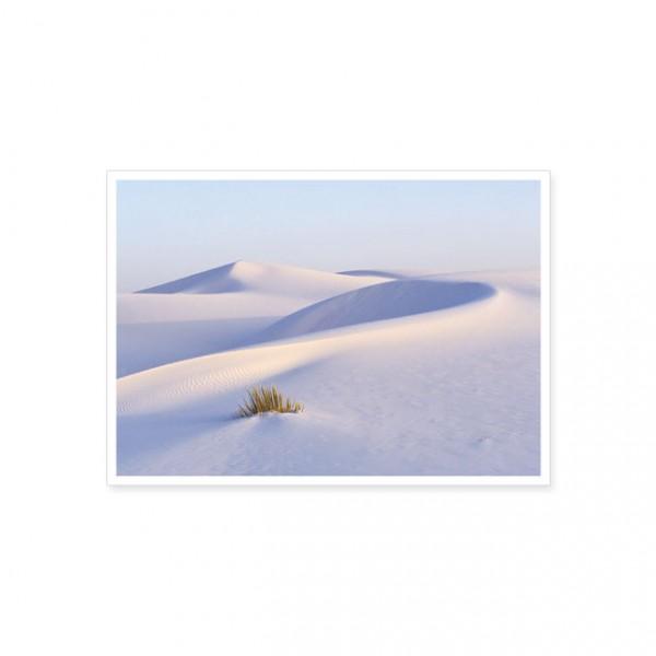 "Postkarte ""Sandkräuselung"""
