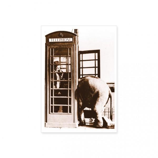 "Postkarte ""Elefant in Telefonzelle"""