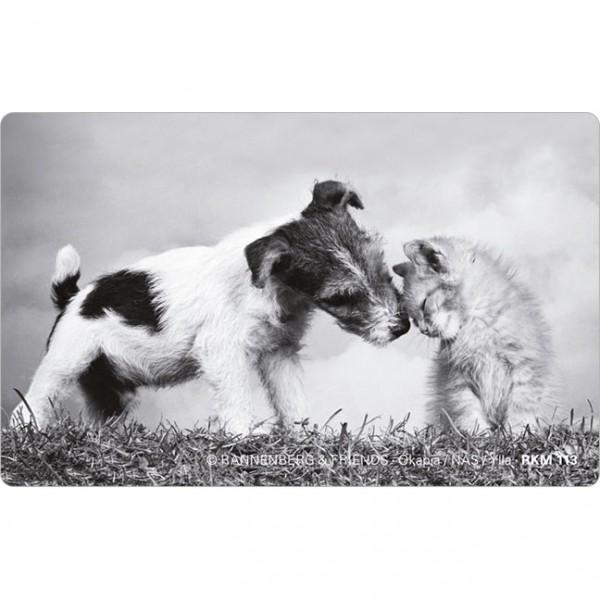 Magnete 'Hund mit Katze'