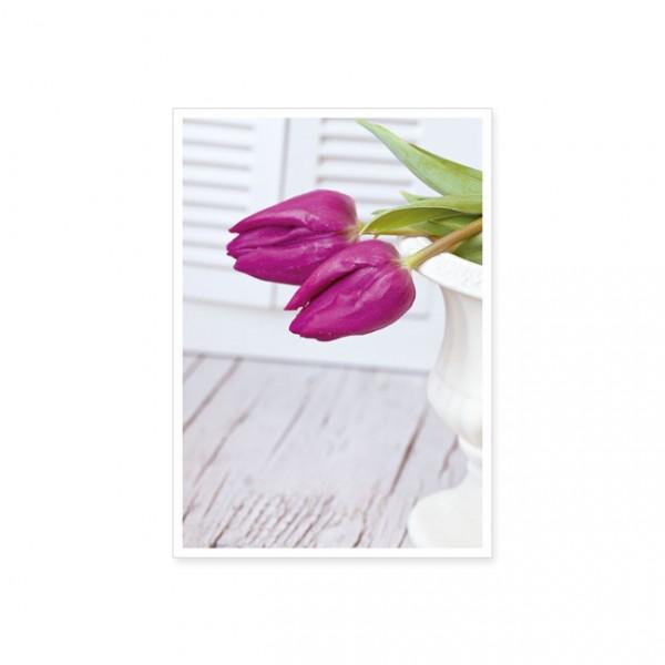 """Postkarte """"Zwei pinke Tulpen"""""""