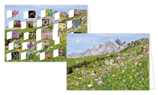 Adventskalenderdoppelkarte 'Alpenblumen'