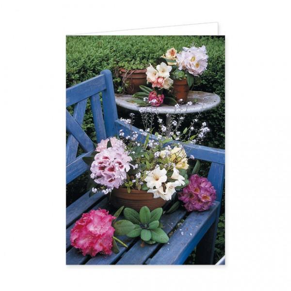 """Doppelkarte """"Stilleben mit sieben verschiedenen Rhododendronblüten"""""""