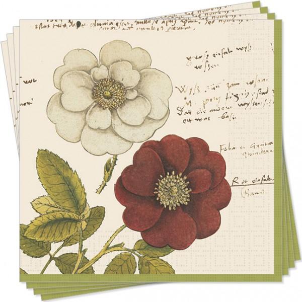 Servietten 'Rosen aus Conrad Gesner Historia Plantarum'