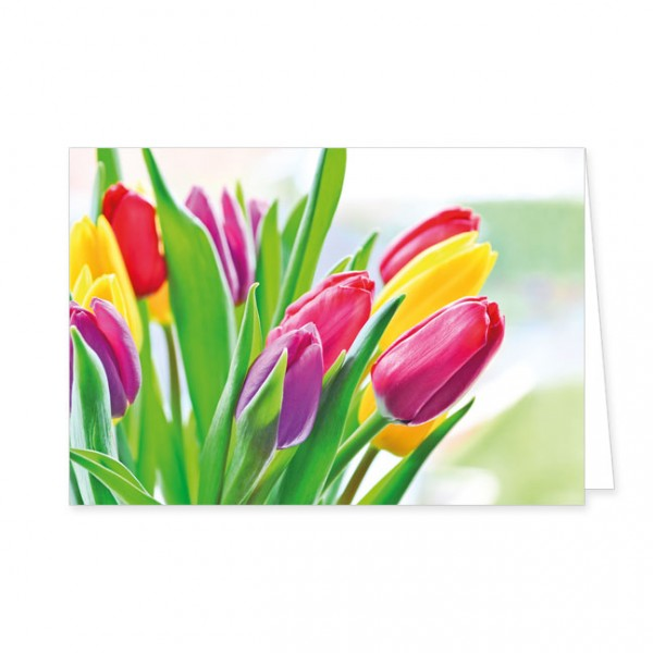 "Doppelkarten ""Endlich Frühling"""